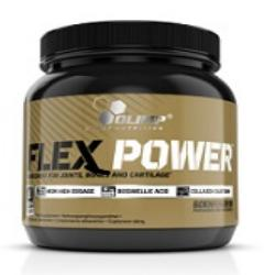 FLEX POWER™ 504 gr